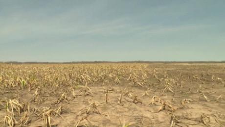 cnneee pkg carrasco sequia bolivia 2 agricultura_00020423