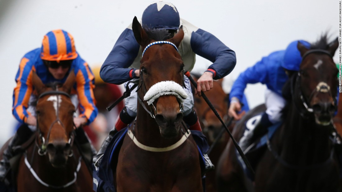 Pat Smullen, aboard Fascinating Rock (center), on his way to victory in the 2015 Qipco Champion Stakes.