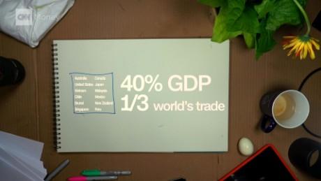 TPP Explainer