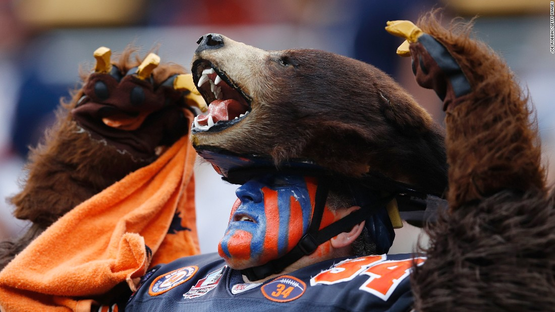 A Chicago Bears fan watches a game against Jacksonville on Sunday, October 16.