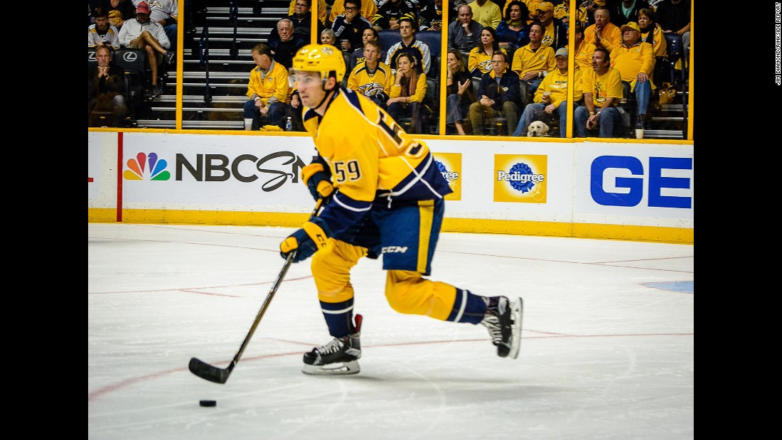 """A dog watches an NHL hockey game in Nashville, Tennessee, on Friday, October 14. """"I wasn't trying to do this, but it looks like I caught a service dog watching (Roman) Josi carry the puck up ice,"""" <a href=""""https://twitter.com/diamondhockey/status/787112843606974465"""" target=""""_blank"""">tweeted Jim Diamond,</a> who covers the Nashville Predators for the Associated Press. """"And over the Pedigree sign too."""" Diamond met the dog, Annie, and her owner during the game. It was Annie's first game -- and she was not a Pedigree plant. """"Just a crazy coincidence,""""<a href=""""https://rinksidereport.com/2016/10/14/service-dog-takes-in-predators-season-opener/"""" target=""""_blank""""> Diamond wrote.</a>"""