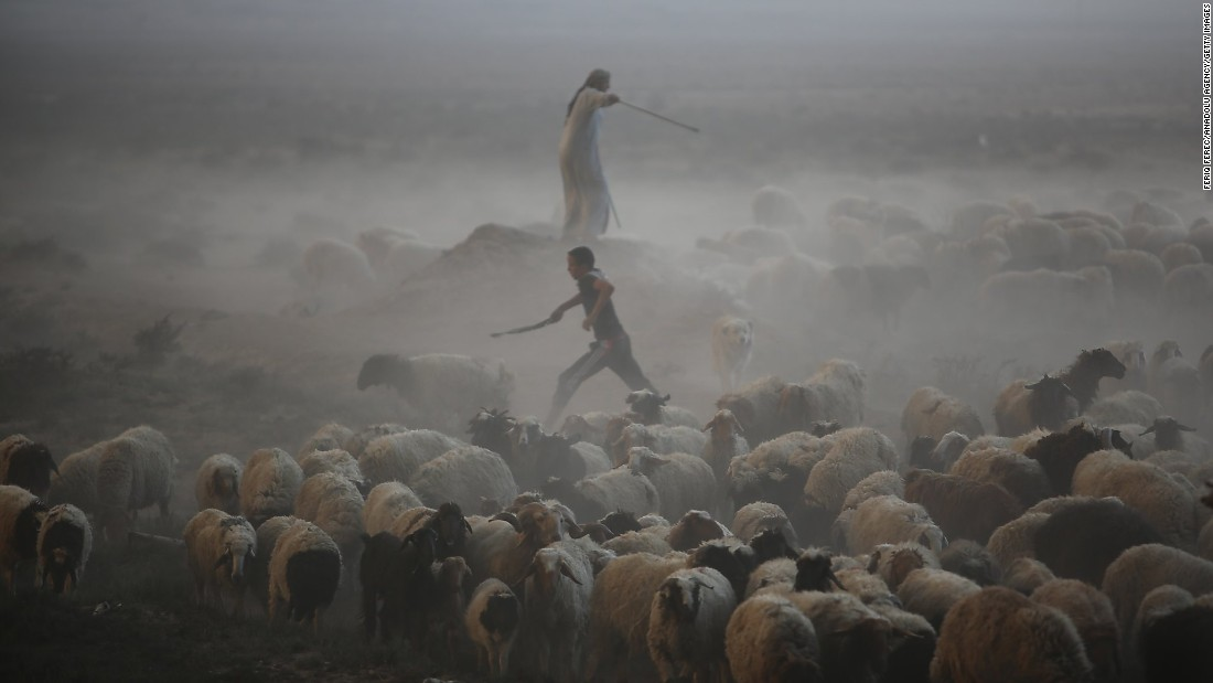 Civilians herd sheep from a village near Mosul on October 18. The smoke came from oil wells ISIS set on fire to limit the visibility of coalition pilots.