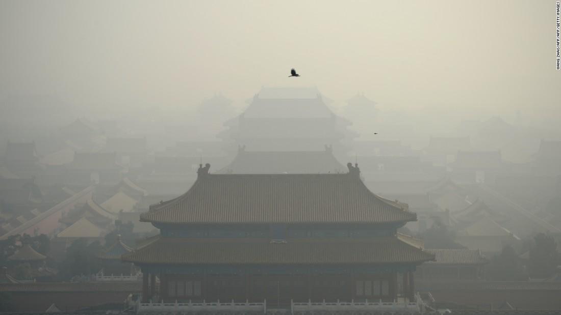 Climate activist wants Trump to visit China
