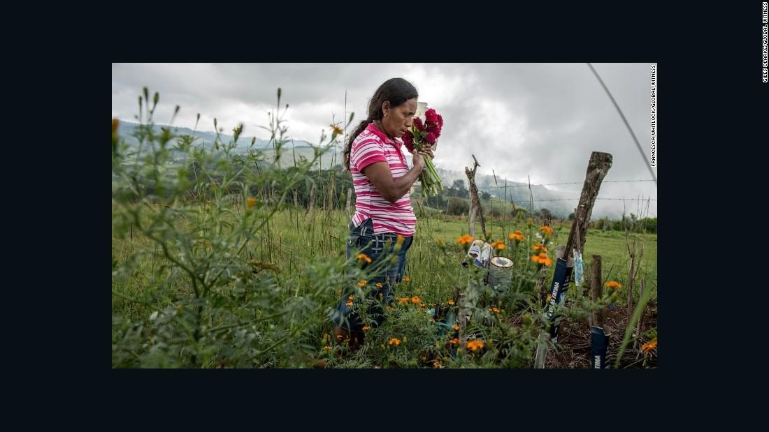 Deadliest place to be an environmental activist
