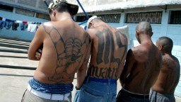 MS-13 street gang is first to be labeled a 'transnational criminal organization' by US
