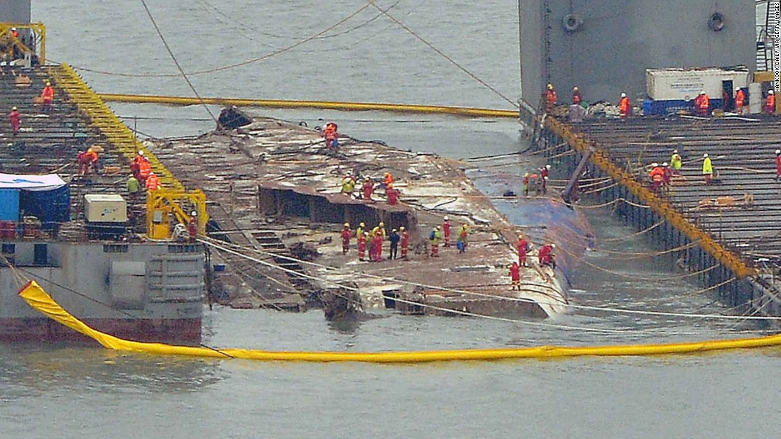 South Korea: Animal remains found onboard recovered Sewol ferry