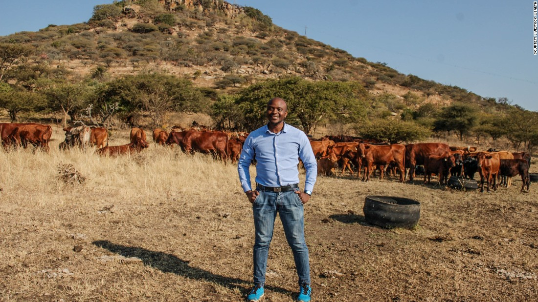 Why investors are buying cattle