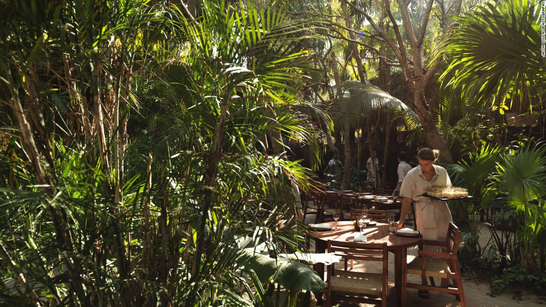 Noma Mexico: The experience of a lifetime?
