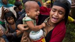 Rohingya refugees need your help