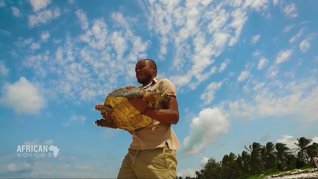 The man saving Kenya's sea turtles