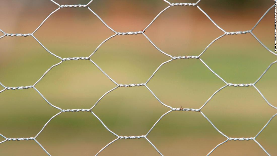 Mexican lawmaker's solution to rape: Keep them out with chicken wire