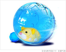 zhuzhu_pets_ball.03.jpg