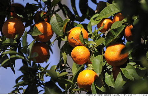The Food and Drug Administration said Friday that it had detained orange juice shipments from Brazil and Canada after they tested positive for low levels of fungicide.