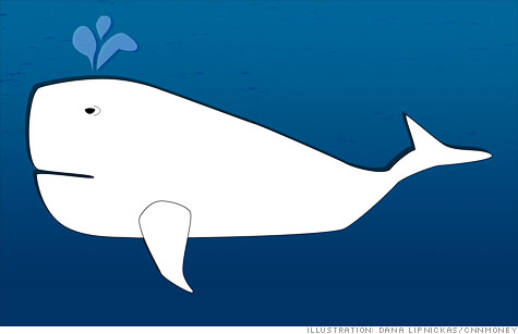 The legend of the White Whale