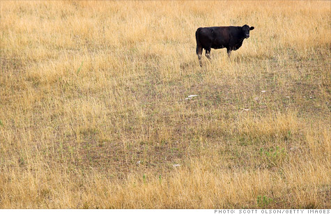 USDA offers drought-relief program on crop insurance