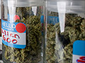 Don't expect a marijuana boom, even where it's legal