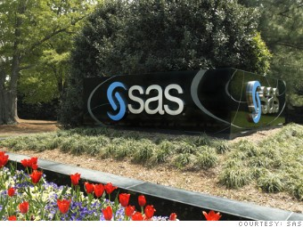 best global companies sas