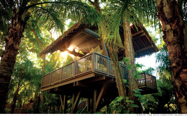 PUR18 tree houses ritz carlton dorado beach