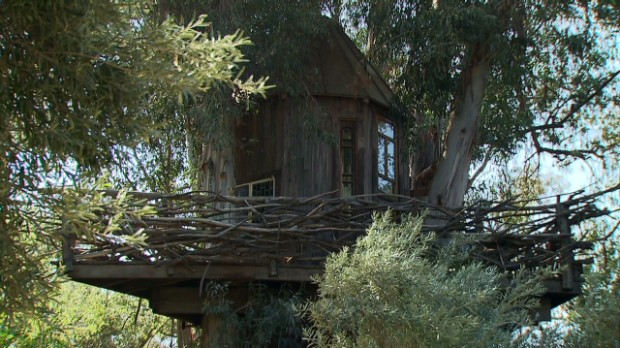 Off-the-grid in a two-story treehouse