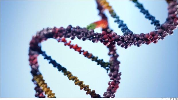 genetic testing brca