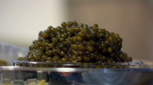 All you need to know about caviar