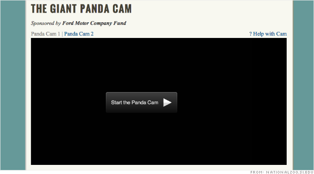 dark panda cam shutdown
