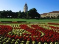 Top 10 law schools in the U.S.