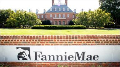 Mnuchin wants U.S. to sell Fannie Mae, Freddie Mac stakes
