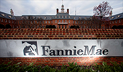 Fannie and Freddie shares slaughtered