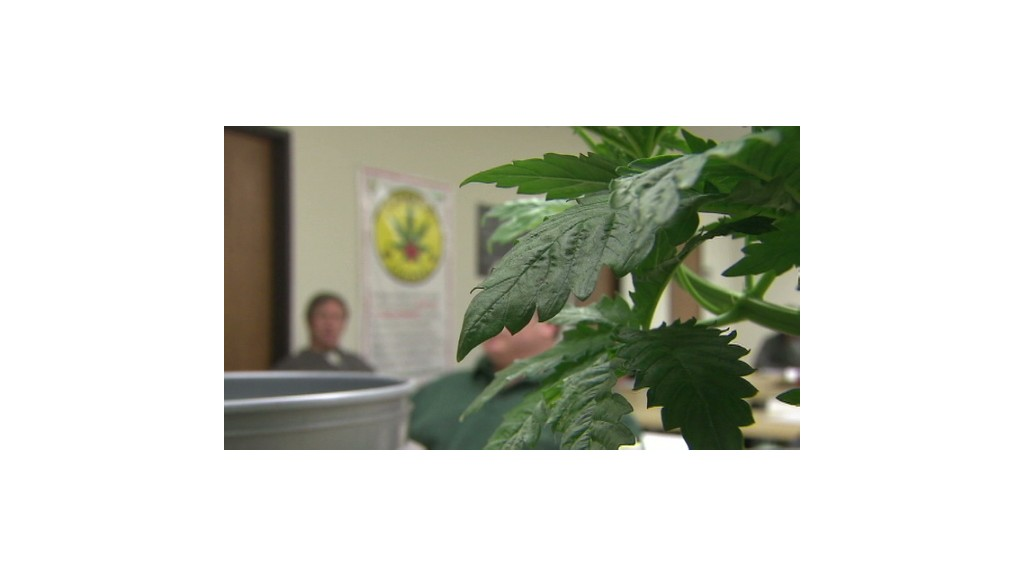 Getting a degree growing pot