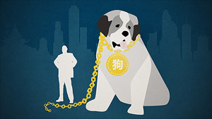Big dogs suffer as Hong Kong status symbols