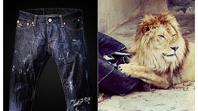Venden en 1.500 dólares unos jeans rasgados por leones