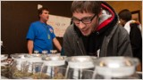 Colorado is missing $21.5 million in pot taxes
