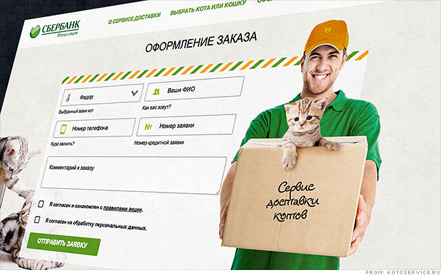 Russian bank offers cats with mortgages