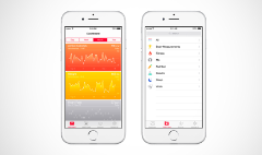 Apple's HealthKit launch derailed by bug
