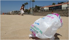 California bans plastic grocery bags