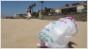 California bans plastic bags