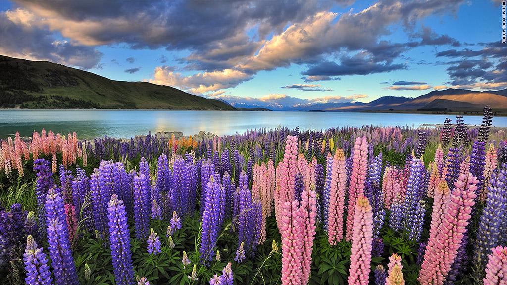 Winter Vacation Destinations New Zealand