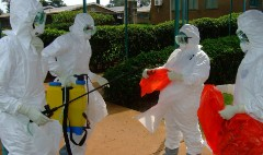 The Ebola stocks: Effect of an outbreak