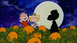 The great pumpkin shortage of 2015