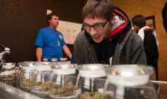 Cannabis be true? Colorado pot sales fall