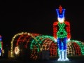 Pro Christmas light displays cost thousands