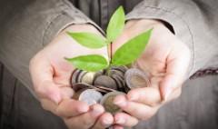 Where to put $50,000 in emergency savings