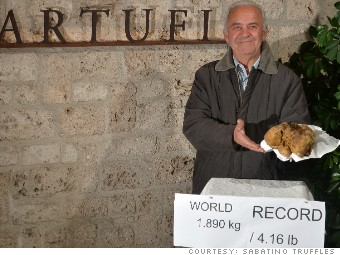 whitetruffle_record