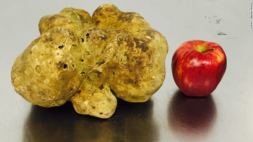 whitetruffle_record_apple