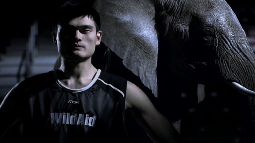 Yao Ming fights to end ivory trade