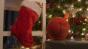 Tech Gift Guide: Stocking stuffers
