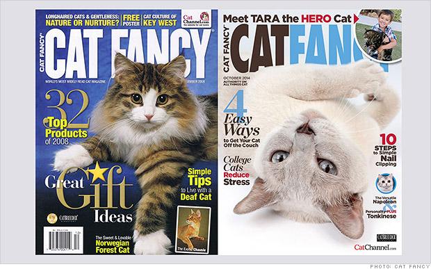 Cat Fancy Abandons Print