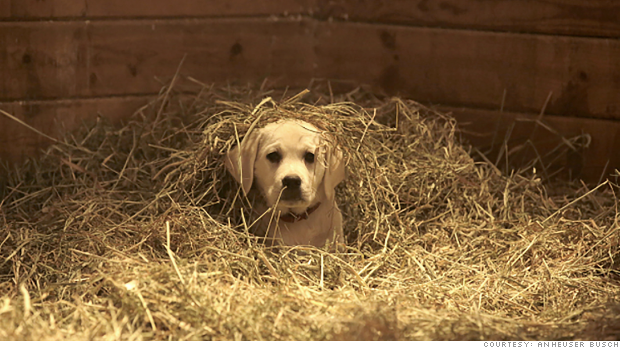Super Bowl ads: Girls, humor and puppies
