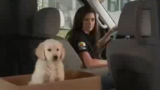 GoDaddy pulls puppy ad after backlash
